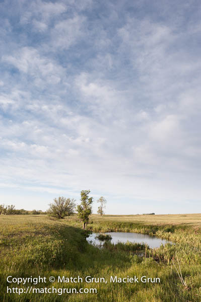 1154-0115-Pond-And-Big-Sky-On-The-Prairie