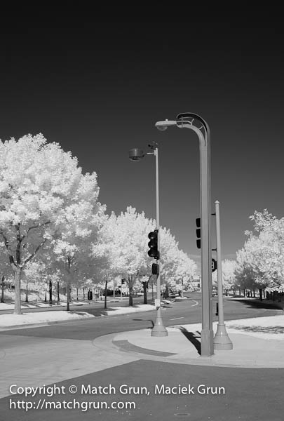 1156-0004-Street-Light-And-Traffic-Light