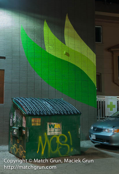 1235-0162-Green-Leaves-And-Dumpster