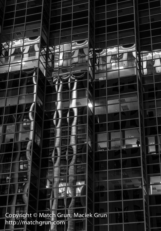 1380-0131-Building-Reflections