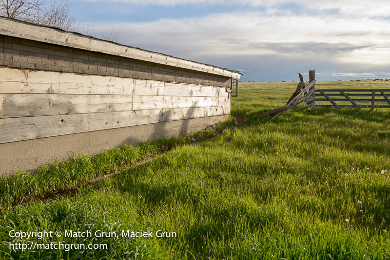 1548-0243-Barn-Late-Afternoon-County-Road-81