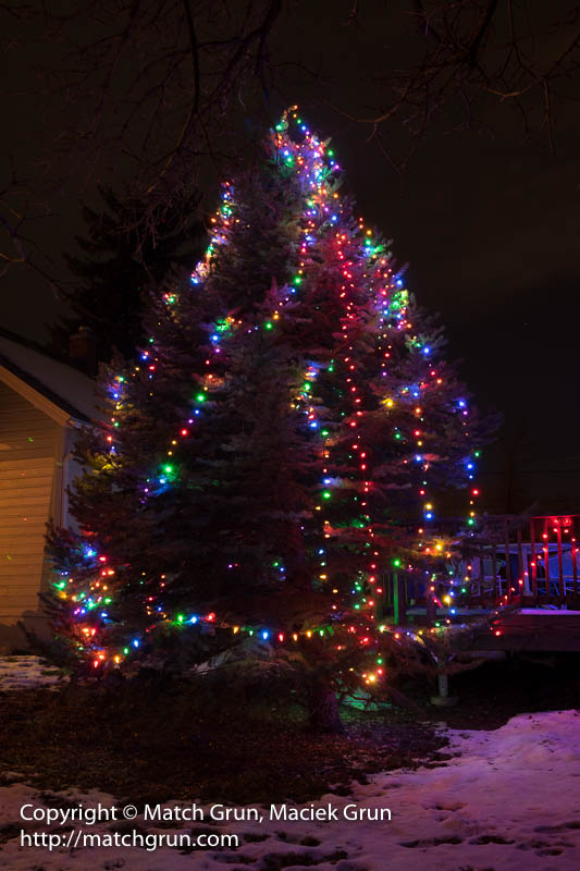 1707-0003-Christmas-Lights-At-Home-2015