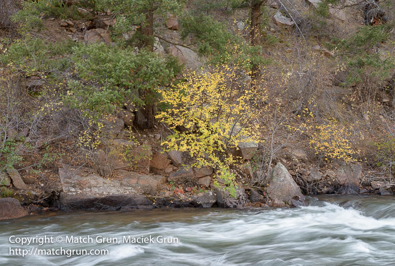 1671-0012-Fall-Colors-On-The-North-Fork