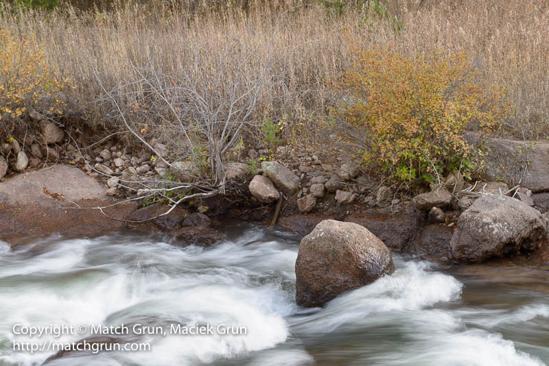1671-0029-Fall-Colors-And-Riverside-Grasses