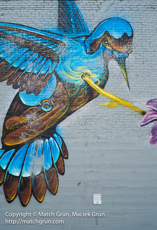 1928-0026-Humming-Bird-Mural-Rino-District